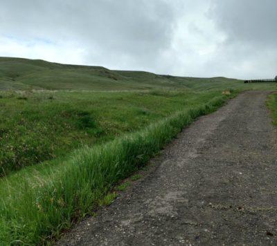 Rainy_Day_Hilly_Trail_Run