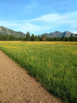 Flatirons_Vista_Loop_in_Bloom