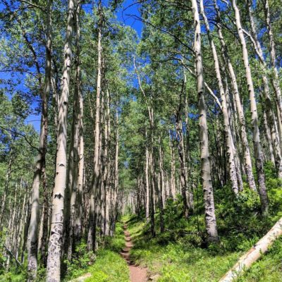 Aspen_on_Minturn_Mile