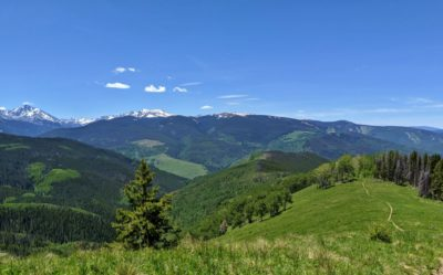 Sawatch_Range_From_Game_Creek_Trail